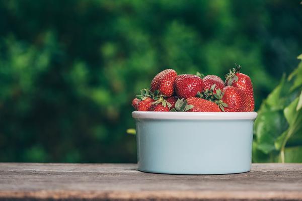 nawożenie truskawek